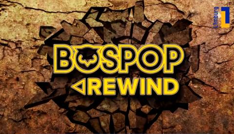Terug in de tijd met Bospop Rewind